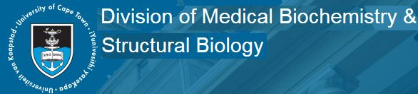 Division of Medical Biochemistry & Structural Biology